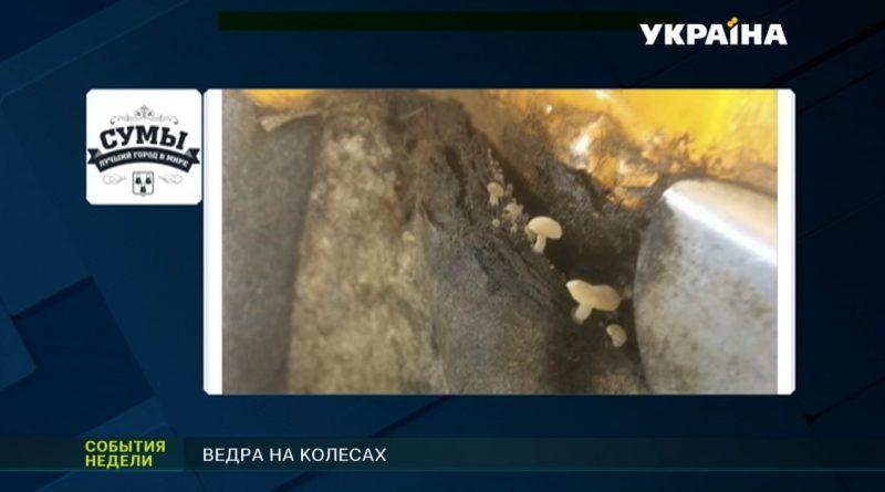 """Сюжет """"Ведра на колесах"""" на ТРК """"Украина"""""""