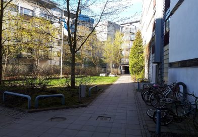 Знакомство с инфраструктурой Хельсинки: город-лес, двойные названия улиц и рай для велосипедистов
